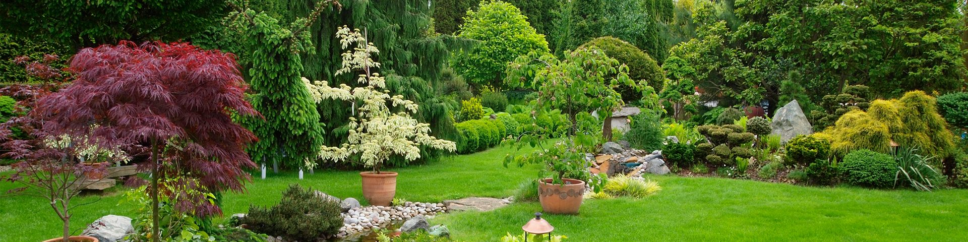 Rain Gardens Landscaping Perth Diy Landscaping Ideas For Your